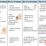 Desarrollo de 0 a 6 años